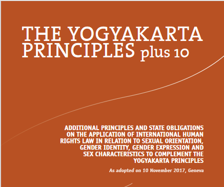 What are the Yogyakarta Principles and what do they seek to achieve?